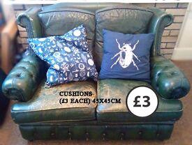 Insect botanic biology blue white cushion scarab 45x45cm