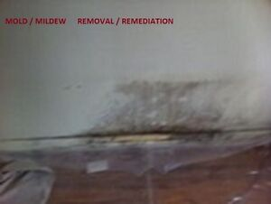 Get rid of mold,mildew and toxic  forever