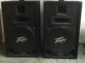 "Peavy  15"" speakers with horns"