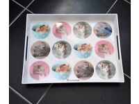 For cat lovers- 8 brand new items