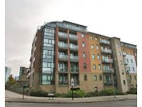 2 double bedroom apartment for rent, Wards Brewery, Ecclesall Road, Sheffield