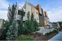 Beautiful Old Strathcona Condo for rent