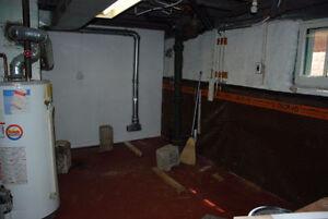 3 Bedroom With Finished Basement Windsor Region Ontario image 9