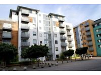 Incredibly Cheap 1 Bedroom Flat With Access To Pool & Gym Facilities Minutes From Deptford Bridge