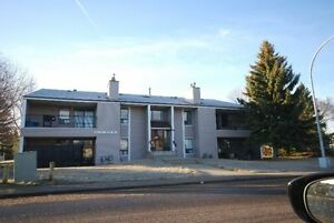 2 BEDROOM APARTMENT - SOUTH EDMONTON / KNOTTWOOD - JANUARY 1