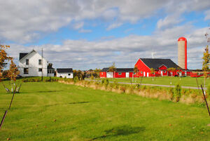 4 Bedroom Farm House for Rent on Wolfe Island