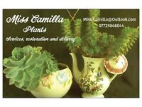 Business Card : Miss Camilla