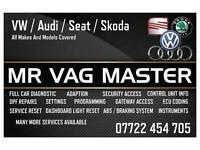 VAG Diagnostics audi volkswagen seat skoda Full car check