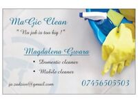 """MaGic Clean"" domestic cleaner north east area's ❤"