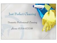 PROFESSIONAL END OF TENANCY AND ONE OFF CLEANING SERVICES