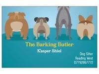 The Barking Butler - Doggy Day care / pet sitter