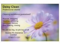DOMESTIC/COMMERCIAL PROFESSIONAL CLEANER £10ph