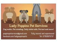 Lady Poppins Pet Services.