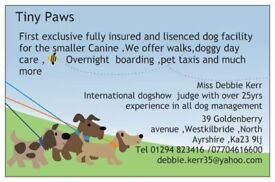 Registered , experienced doggy boarder within our family home