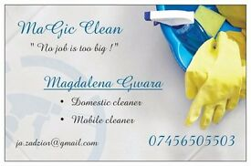 **Domestic cleaner ** I'm ready when you are !