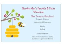 Bumble Bee's Sparkle & Shine Cleaning