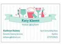 Domestic Cleaning Service - Taking care of your housework so you don't have to!