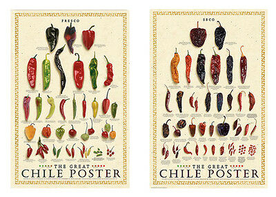 The Great Chile Poster Fresh and Dried Mark Miller Pepper Poster 2 Print Set