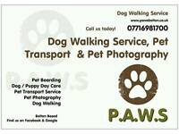 Dog walker , Dog walking , Pet Boarding