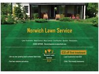 Norwich Lawn Service --- Lawn Treatments - Weed Control - Moss control - Renovation ---