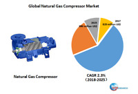 Global Natural Gas Compressor market research