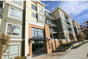Surrey Whalley 1 Bedroom Apartment for Rent