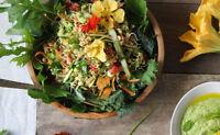 Cuisinière santé à domicile / Private healthy cook
