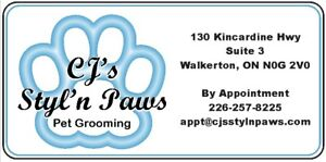 Dog Grooming Walkerton