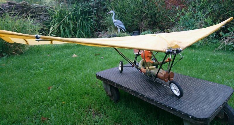 Rc Hang Glider 5 Foot Wingspan Rc Plane Aircraft Model In