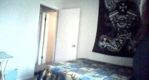 Room  and board for rent Weekly in shared dplx(food incl)