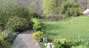 BEAUTIFUL NEW B. & B. FRISANCO, NORTHERN ITALY-1 HR. FROM VENICE
