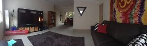 Room For Rent Greenwich Greenwich Lane Cove Area Preview