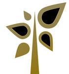 Golden Vine Designs