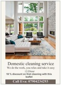 DOMESTIC CLEANING £12/HOUR