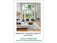 DOMESTIC CLEANING SERVICE Alton, Beech, Four Marks, Medstead for £12/hours