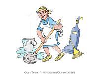 Cleaner/Helper Wanted
