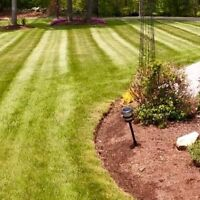 Spring clean up and summer lawn care
