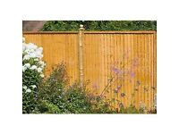 Quality Fencing and Fence Repair Services - Cockfosters & Local Areas