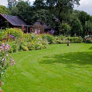 Lawn Mowing Salisbury Salisbury Area Preview