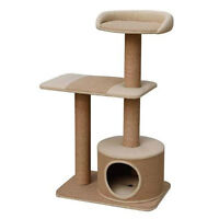 cat tree or cat house