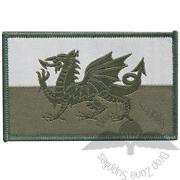 Cloth Military Badges