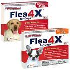 Flea 4X