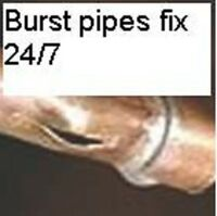 Emergency plumbing on call 24/7, Mold removal