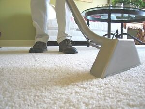 ALLERGY RELIEF PACKAGE - DUCT & CARPET CLEANING