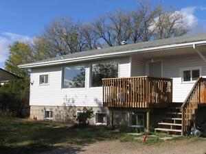 2 Bedroom 1 Bathroom BASEMENT SUITE! AVAILABLE NOW! $950/MONTH
