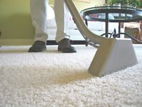 Professional CARPET CLEANING 9057829005 call now!