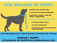 Dogwalking/pet sitting Ouston area.