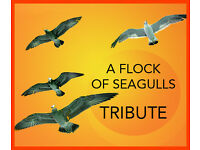 A FLOCK OF SEAGULLS Tribute Band looking for SPACE AGE Vocalist, Guitarist, Drummer