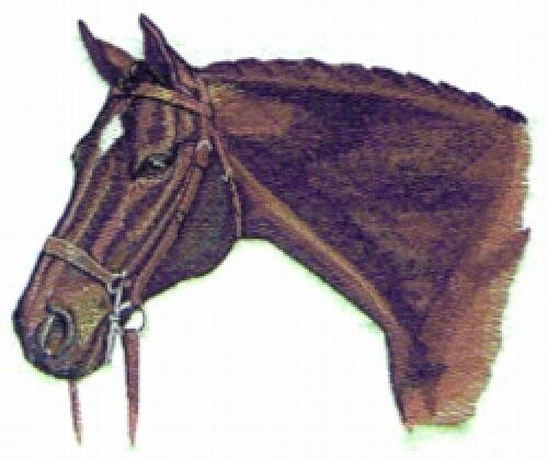 Embroidered Fleece Jacket - Hunter Horse BT2340 Sizes S - XXL