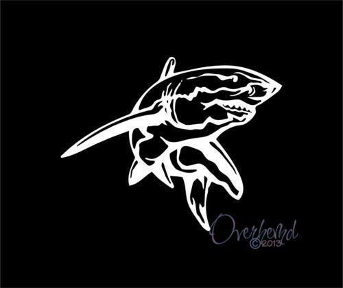 Shark Decal Ebay